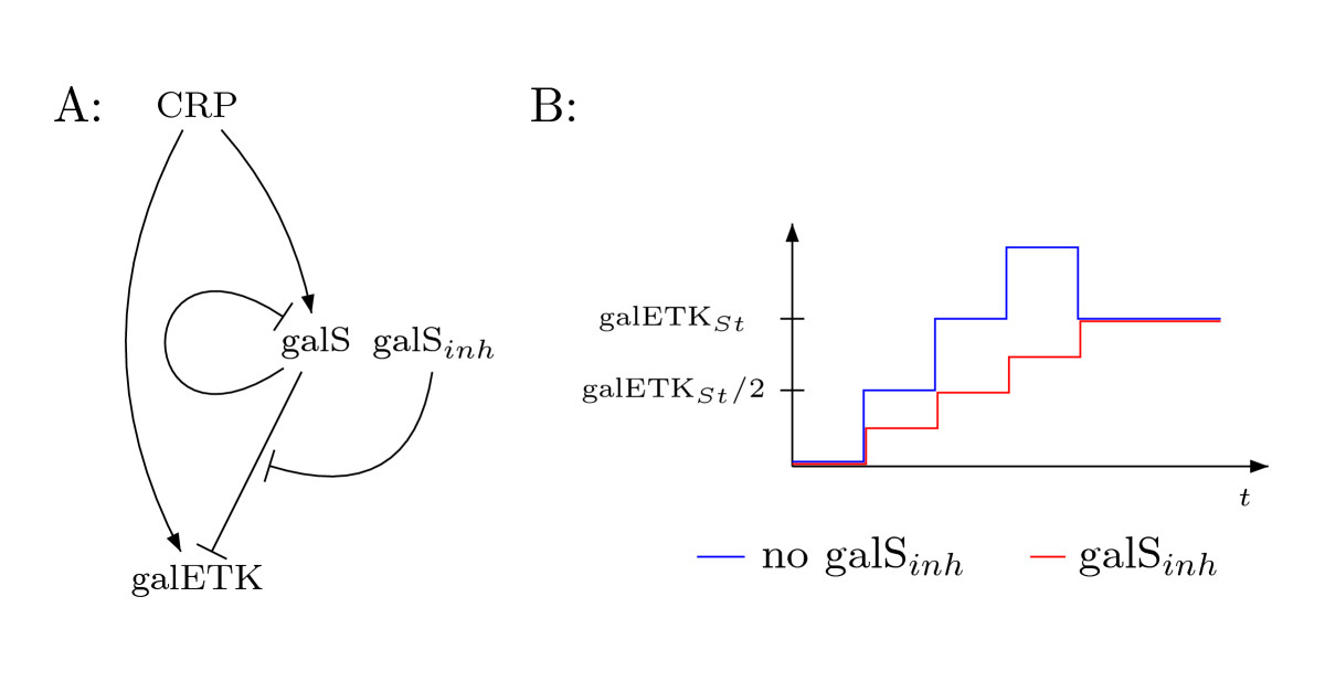 http://static-content.springer.com/image/art%3A10.1186%2F1752-0509-1-4/MediaObjects/12918_2006_Article_4_Fig2_HTML.jpg