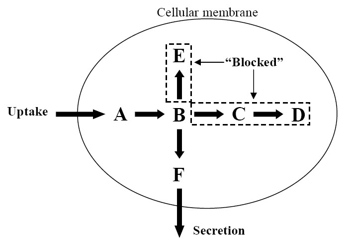 http://static-content.springer.com/image/art%3A10.1186%2F1752-0509-3-117/MediaObjects/12918_2009_Article_385_Fig3_HTML.jpg