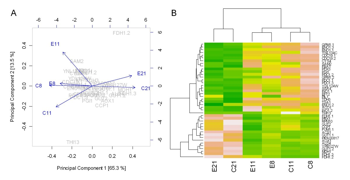 http://static-content.springer.com/image/art%3A10.1186%2F1752-0509-4-141/MediaObjects/12918_2010_Article_552_Fig3_HTML.jpg