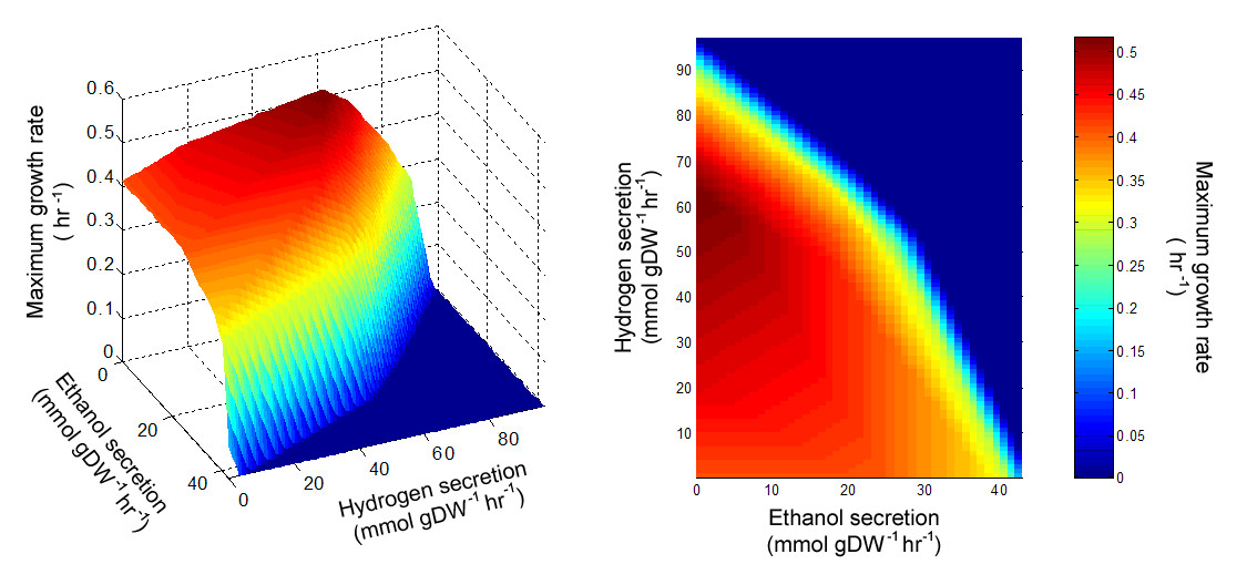 http://static-content.springer.com/image/art%3A10.1186%2F1752-0509-4-31/MediaObjects/12918_2009_Article_420_Fig4_HTML.jpg