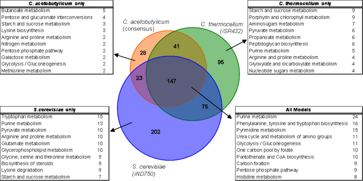 http://static-content.springer.com/image/art%3A10.1186%2F1752-0509-4-31/MediaObjects/12918_2009_Article_420_Fig5_HTML.jpg