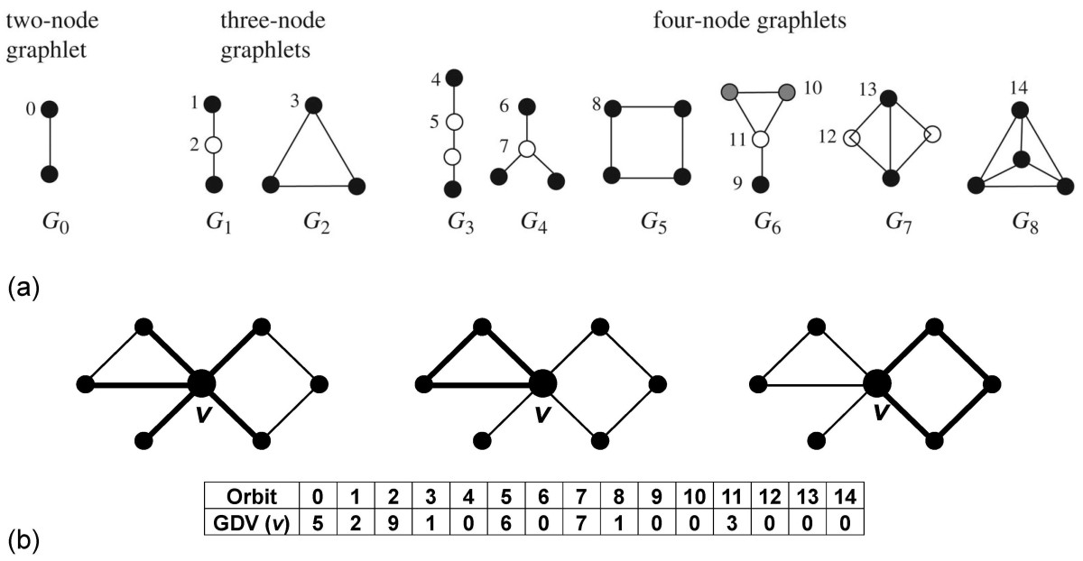 http://static-content.springer.com/image/art%3A10.1186%2F1752-0509-4-84/MediaObjects/12918_2009_Article_473_Fig1_HTML.jpg