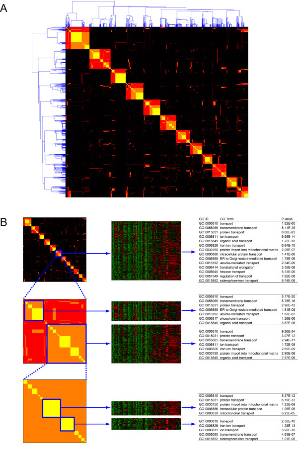 http://static-content.springer.com/image/art%3A10.1186%2F1752-0509-5-117/MediaObjects/12918_2011_720_Fig4_HTML.jpg