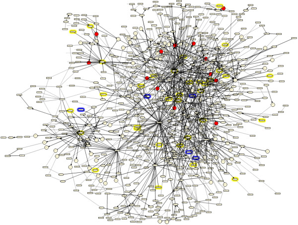 http://static-content.springer.com/image/art%3A10.1186%2F1752-0509-5-168/MediaObjects/12918_2011_767_Fig6_HTML.jpg
