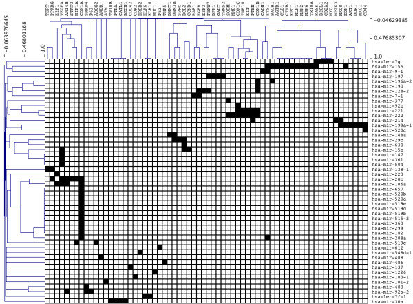 http://static-content.springer.com/image/art%3A10.1186%2F1752-0509-5-183/MediaObjects/12918_2011_778_Fig2_HTML.jpg