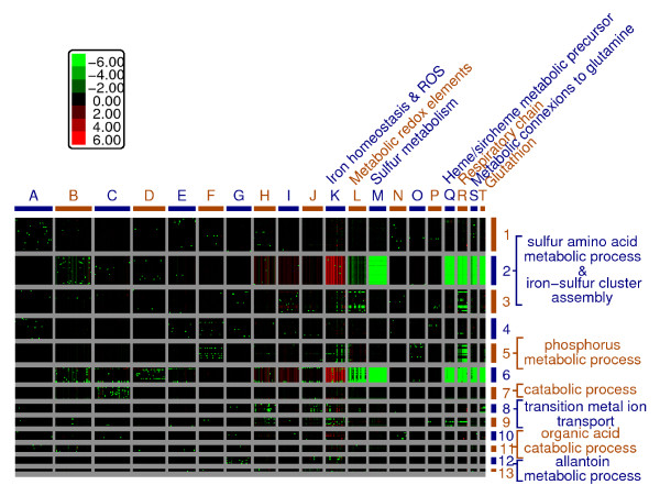 http://static-content.springer.com/image/art%3A10.1186%2F1752-0509-5-51/MediaObjects/12918_2010_642_Fig6_HTML.jpg