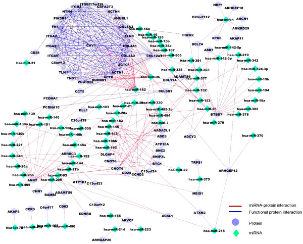 http://static-content.springer.com/image/art%3A10.1186%2F1752-0509-6-112/MediaObjects/12918_2012_957_Fig5_HTML.jpg