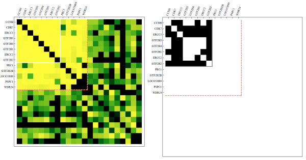 http://static-content.springer.com/image/art%3A10.1186%2F1752-0509-6-89/MediaObjects/12918_2012_929_Fig12_HTML.jpg