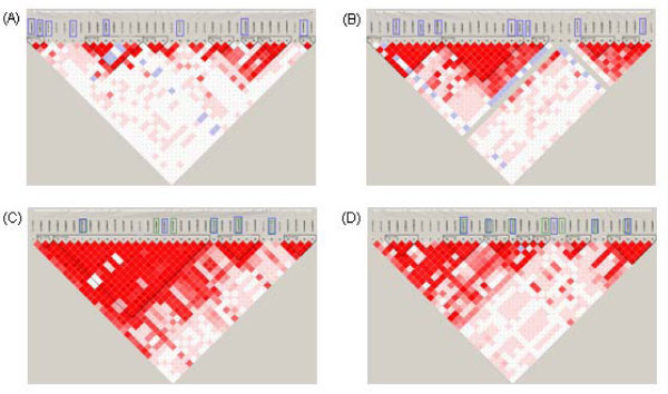 http://static-content.springer.com/image/art%3A10.1186%2F1753-6561-3-S7-S7/MediaObjects/12919_2009_Article_2754_Fig1_HTML.jpg