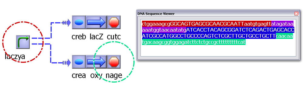 http://static-content.springer.com/image/art%3A10.1186%2F1754-1611-3-19/MediaObjects/13036_2009_Article_45_Fig8_HTML.jpg