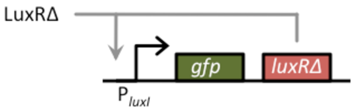http://static-content.springer.com/image/art%3A10.1186%2F1754-1611-4-4/MediaObjects/13036_2009_Article_50_Fig2_HTML.jpg