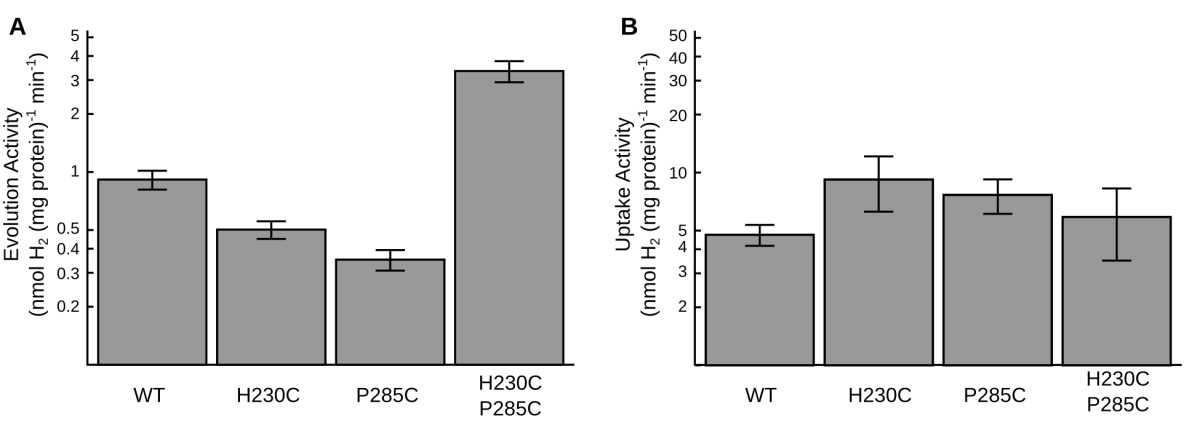 http://static-content.springer.com/image/art%3A10.1186%2F1754-1611-7-17/MediaObjects/13036_2013_Article_119_Fig3_HTML.jpg