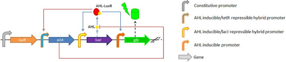 http://static-content.springer.com/image/art%3A10.1186%2F1754-1611-7-26/MediaObjects/13036_2013_Article_129_Fig1_HTML.jpg