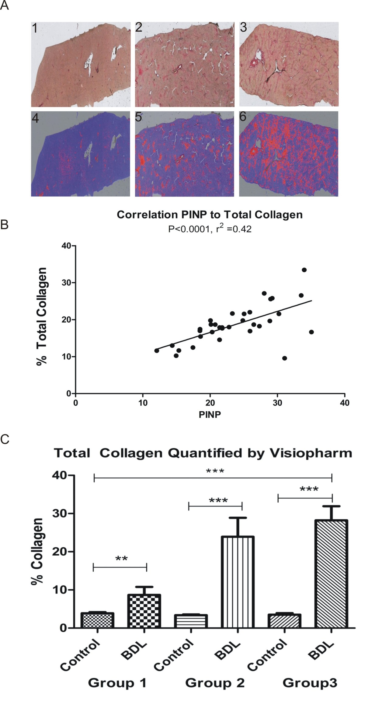 http://static-content.springer.com/image/art%3A10.1186%2F1755-1536-3-5/MediaObjects/13069_2009_Article_20_Fig3_HTML.jpg