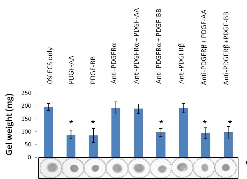 http://static-content.springer.com/image/art%3A10.1186%2F1755-1536-6-10/MediaObjects/13069_2013_Article_127_Fig5_HTML.jpg