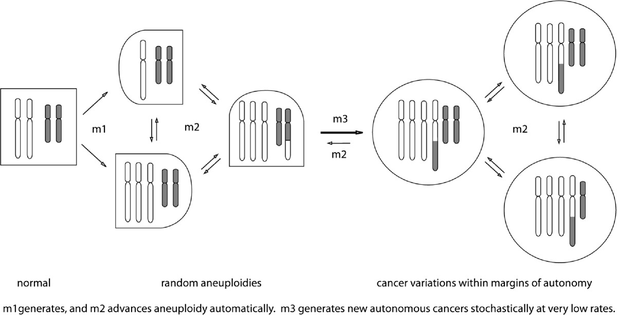 http://static-content.springer.com/image/art%3A10.1186%2F1755-8166-6-44/MediaObjects/13039_2013_Article_436_Fig1_HTML.jpg