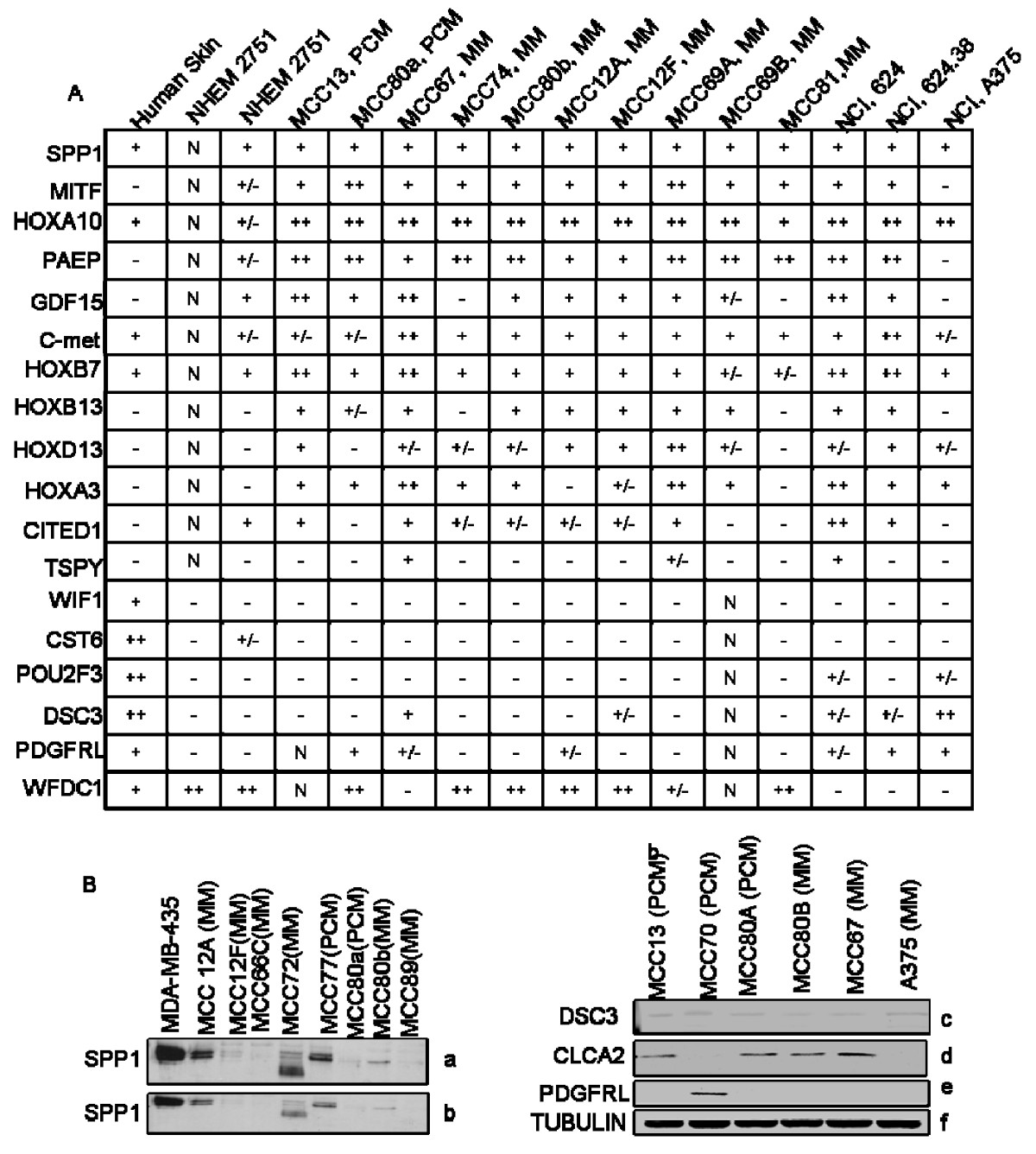 http://static-content.springer.com/image/art%3A10.1186%2F1755-8794-1-13/MediaObjects/12920_2007_Article_13_Fig3_HTML.jpg