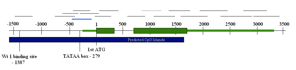 http://static-content.springer.com/image/art%3A10.1186%2F1755-8794-2-53/MediaObjects/12920_2008_Article_117_Fig2_HTML.jpg