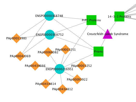http://static-content.springer.com/image/art%3A10.1186%2F1755-8794-3-7/MediaObjects/12920_2009_Article_142_Fig4_HTML.jpg