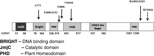 http://static-content.springer.com/image/art%3A10.1186%2F1755-8794-6-1/MediaObjects/12920_2012_365_Fig1_HTML.jpg