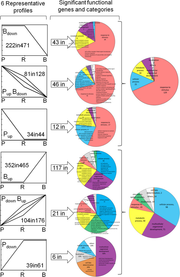 http://static-content.springer.com/image/art%3A10.1186%2F1755-8794-6-15/MediaObjects/12920_2012_391_Fig3_HTML.jpg