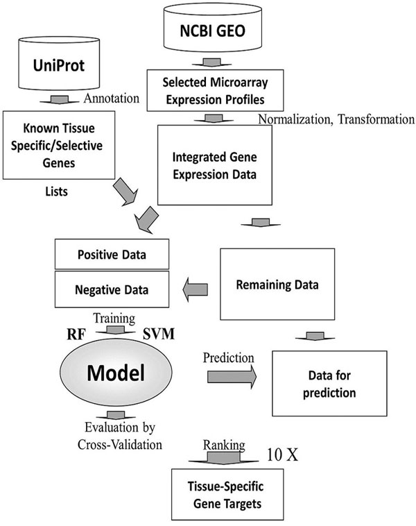 http://static-content.springer.com/image/art%3A10.1186%2F1755-8794-6-S1-S10/MediaObjects/12920_2013_355_Fig1_HTML.jpg