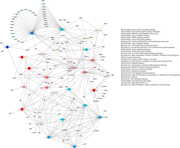 http://static-content.springer.com/image/art%3A10.1186%2F1755-8794-6-S1-S17/MediaObjects/12920_2013_362_Fig2_HTML.jpg