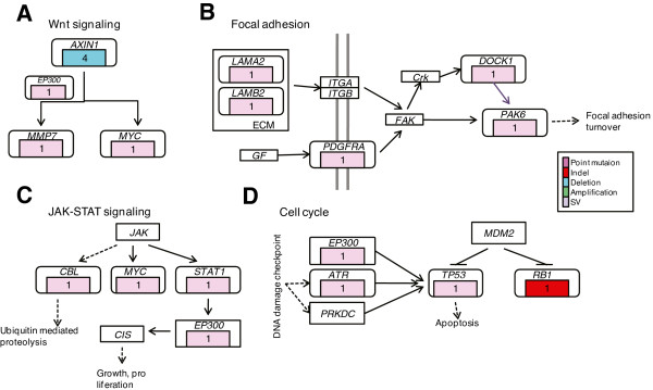 http://static-content.springer.com/image/art%3A10.1186%2F1755-8794-7-2/MediaObjects/12920_2013_445_Fig5_HTML.jpg