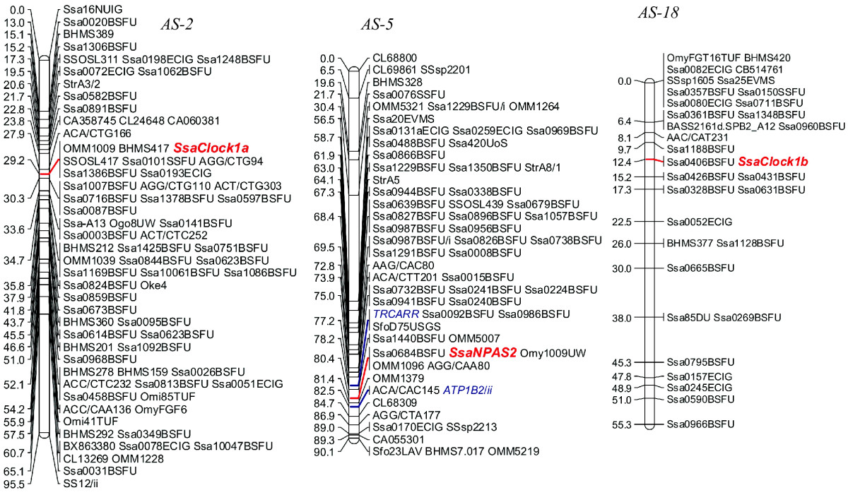 http://static-content.springer.com/image/art%3A10.1186%2F1756-0500-3-215/MediaObjects/13104_2010_Article_619_Fig5_HTML.jpg