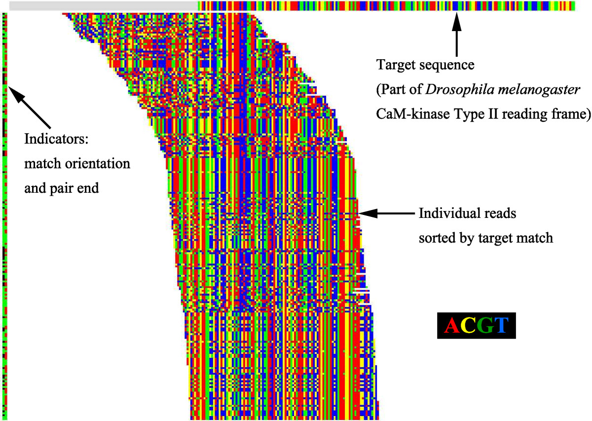 http://static-content.springer.com/image/art%3A10.1186%2F1756-0500-5-673/MediaObjects/13104_2012_Article_1965_Fig1_HTML.jpg