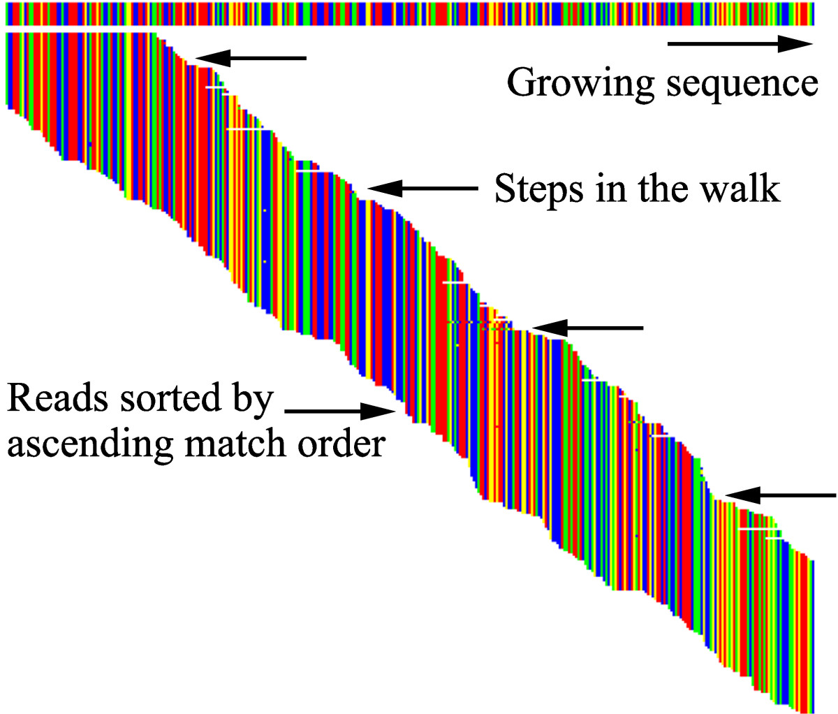 http://static-content.springer.com/image/art%3A10.1186%2F1756-0500-5-673/MediaObjects/13104_2012_Article_1965_Fig2_HTML.jpg