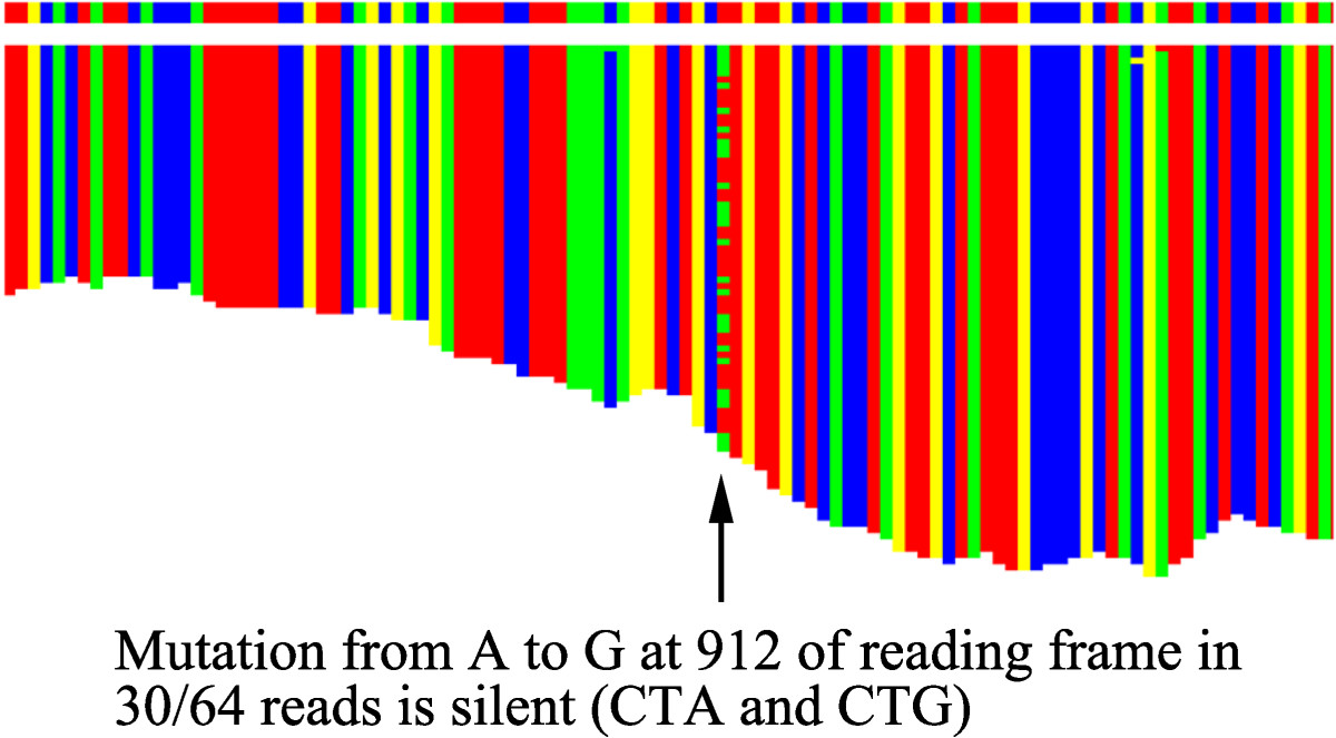http://static-content.springer.com/image/art%3A10.1186%2F1756-0500-5-673/MediaObjects/13104_2012_Article_1965_Fig4_HTML.jpg