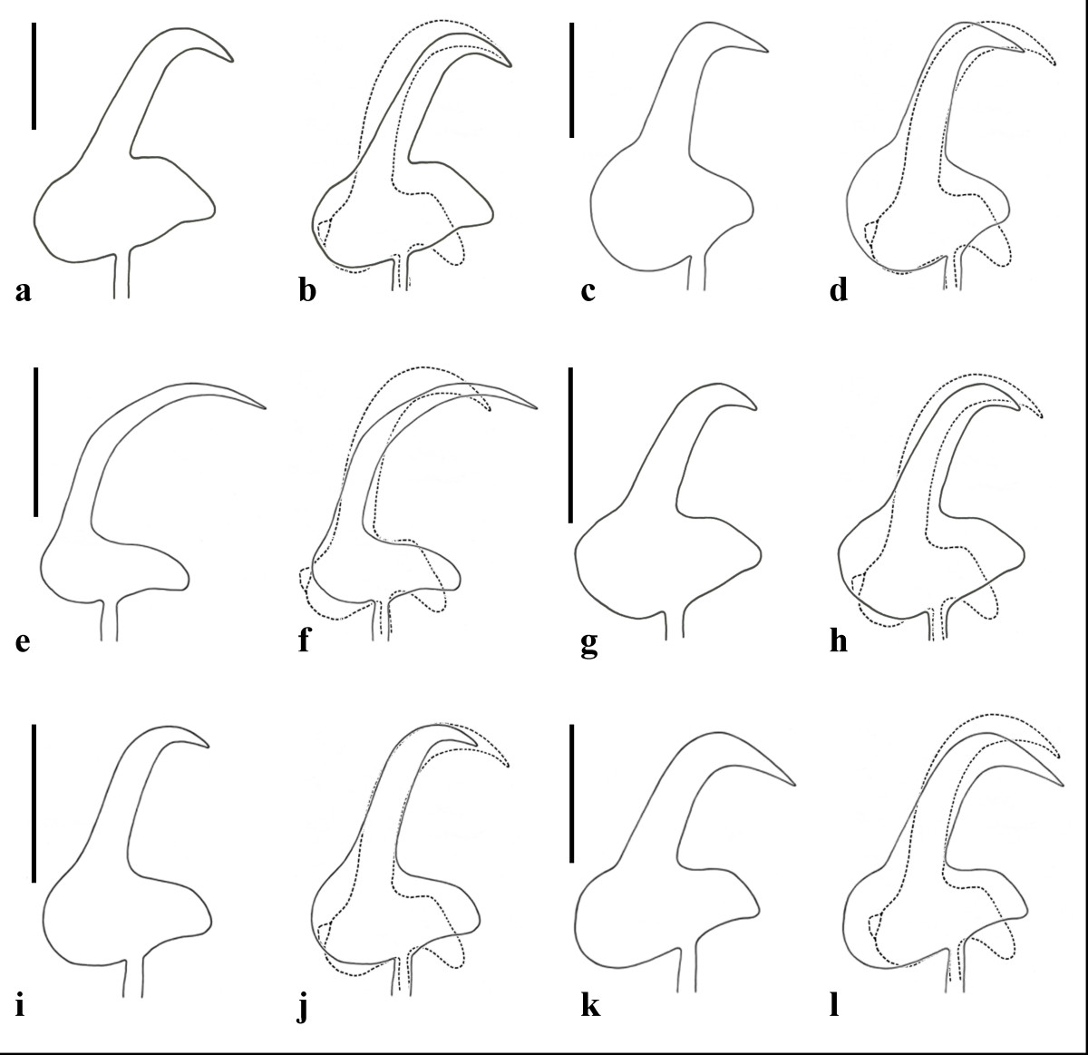 http://static-content.springer.com/image/art%3A10.1186%2F1756-3305-4-100/MediaObjects/13071_2011_Article_354_Fig3_HTML.jpg