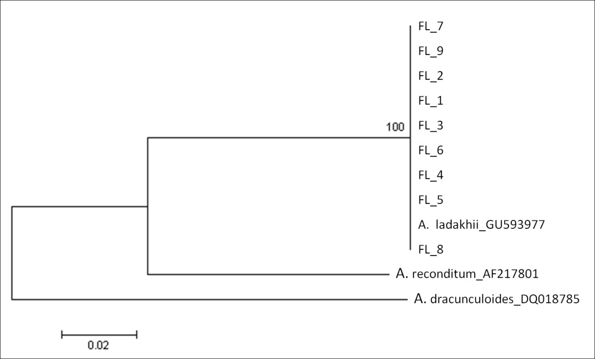 http://static-content.springer.com/image/art%3A10.1186%2F1756-3305-4-143/MediaObjects/13071_2011_Article_390_Fig5_HTML.jpg