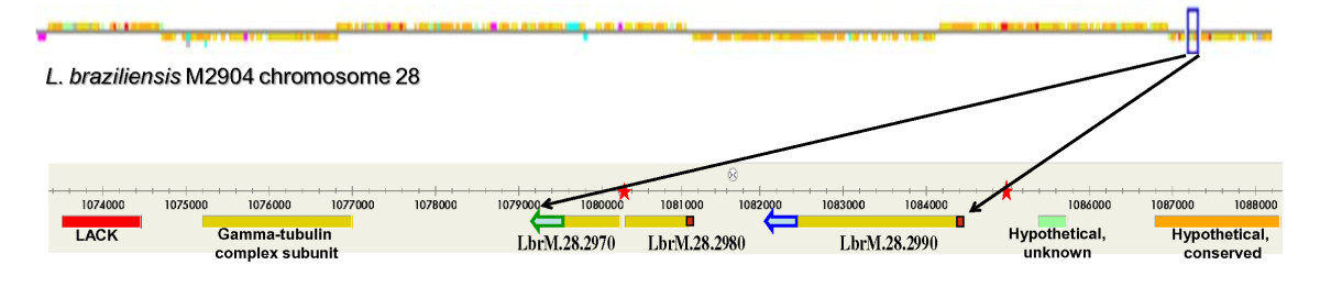 http://static-content.springer.com/image/art%3A10.1186%2F1756-3305-4-166/MediaObjects/13071_2011_Article_423_Fig1_HTML.jpg