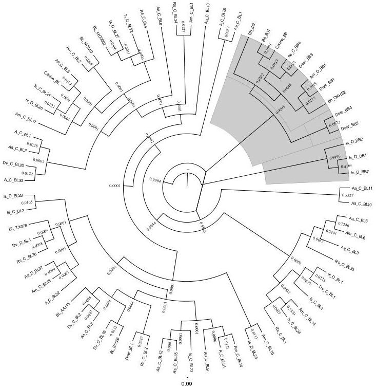 http://static-content.springer.com/image/art%3A10.1186%2F1756-3305-5-139/MediaObjects/13071_2012_Article_609_Fig1_HTML.jpg