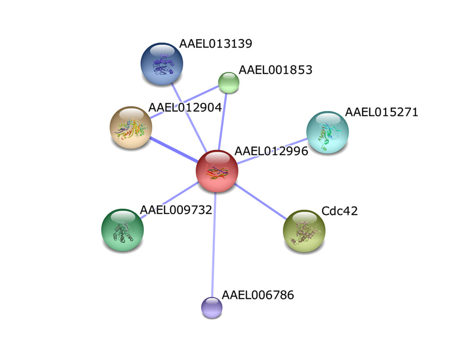 http://static-content.springer.com/image/art%3A10.1186%2F1756-3305-5-290/MediaObjects/13071_2012_Article_817_Fig6_HTML.jpg