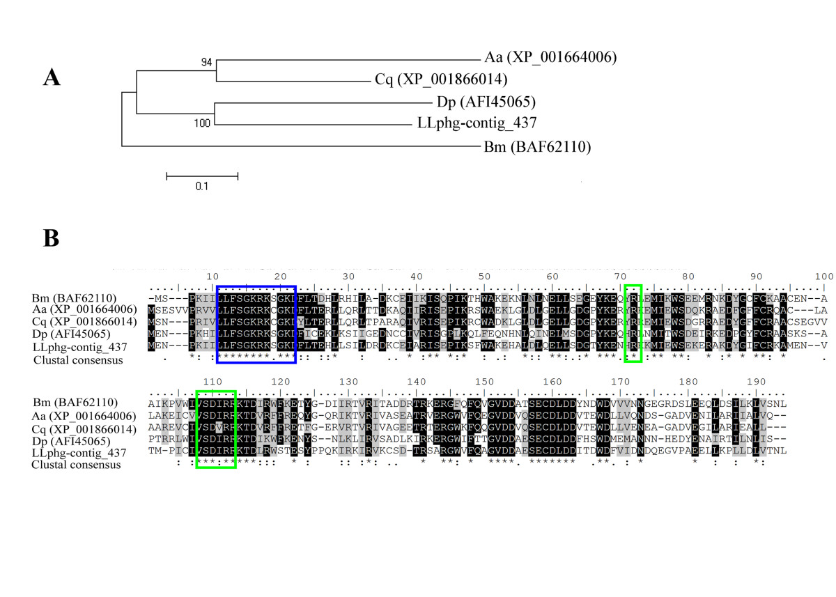http://static-content.springer.com/image/art%3A10.1186%2F1756-3305-6-56/MediaObjects/13071_2012_Article_879_Fig5_HTML.jpg