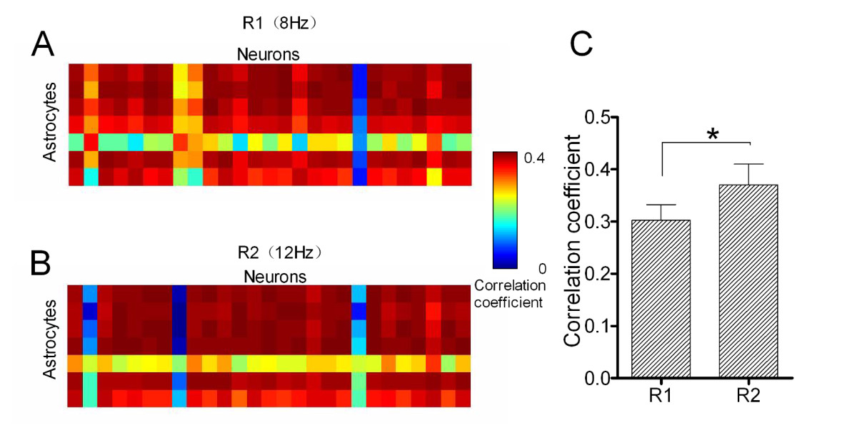 http://static-content.springer.com/image/art%3A10.1186%2F1756-6606-5-12/MediaObjects/13041_2012_Article_166_Fig5_HTML.jpg