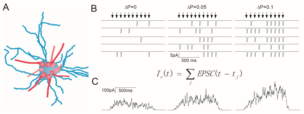 http://static-content.springer.com/image/art%3A10.1186%2F1756-6606-5-26/MediaObjects/13041_2012_Article_170_Fig5_HTML.jpg