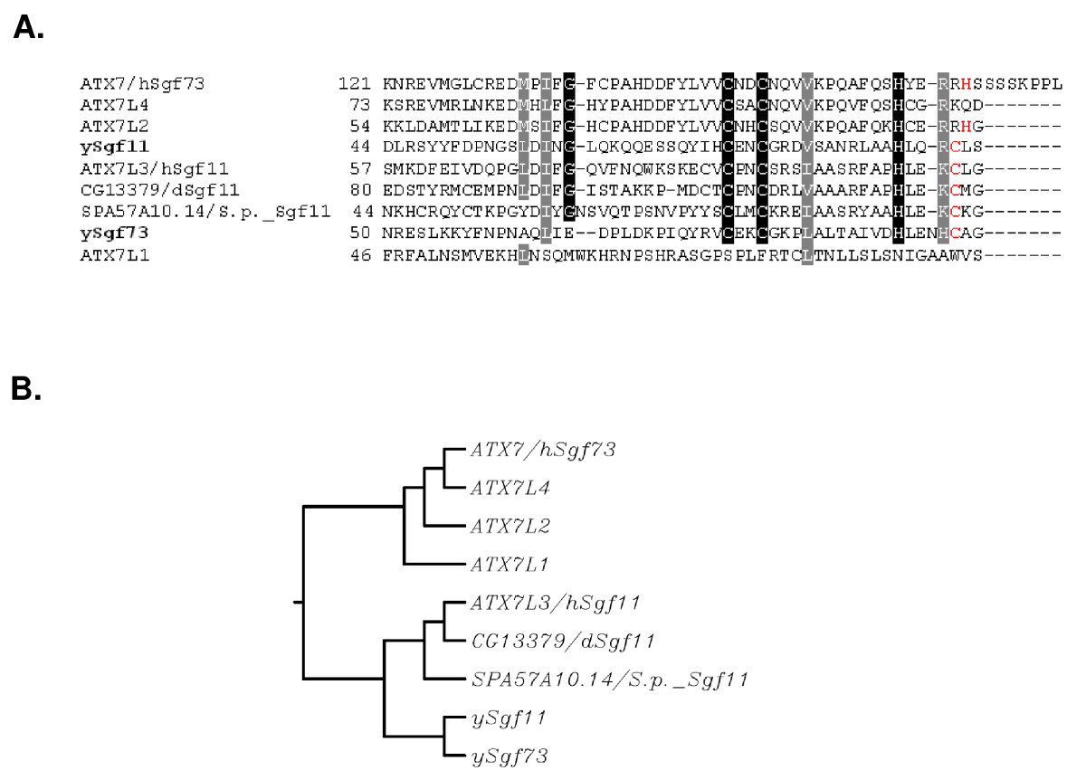 http://static-content.springer.com/image/art%3A10.1186%2F1756-8935-2-2/MediaObjects/13072_2008_Article_12_Fig1_HTML.jpg