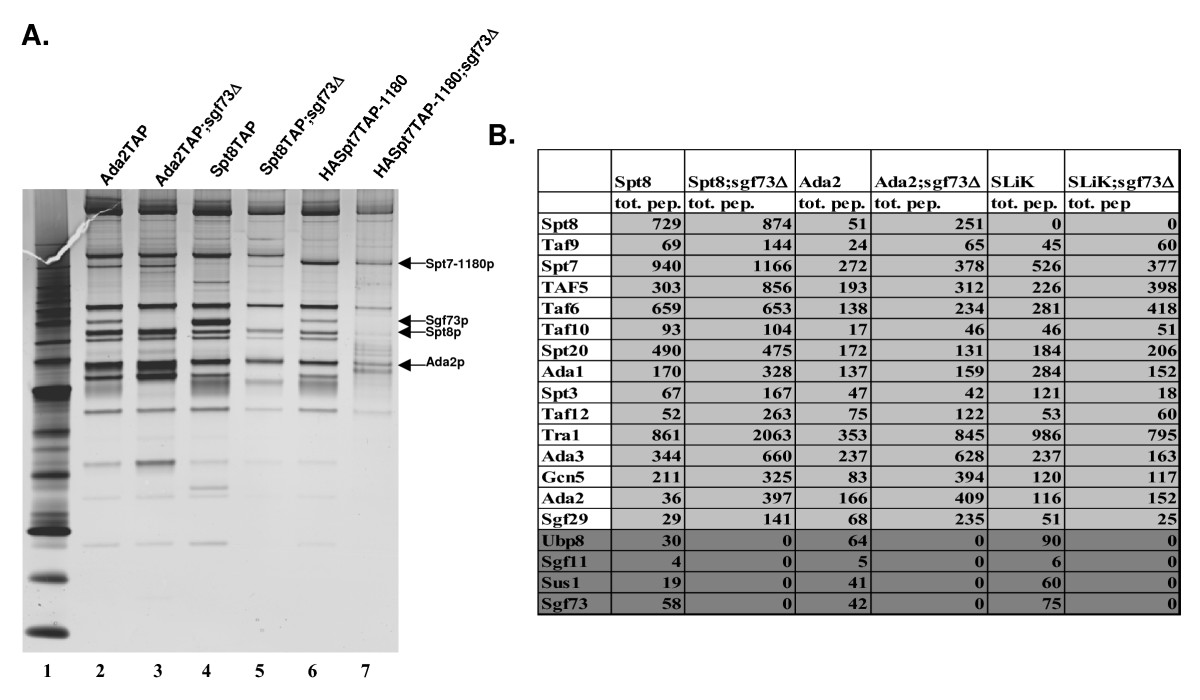 http://static-content.springer.com/image/art%3A10.1186%2F1756-8935-2-2/MediaObjects/13072_2008_Article_12_Fig3_HTML.jpg
