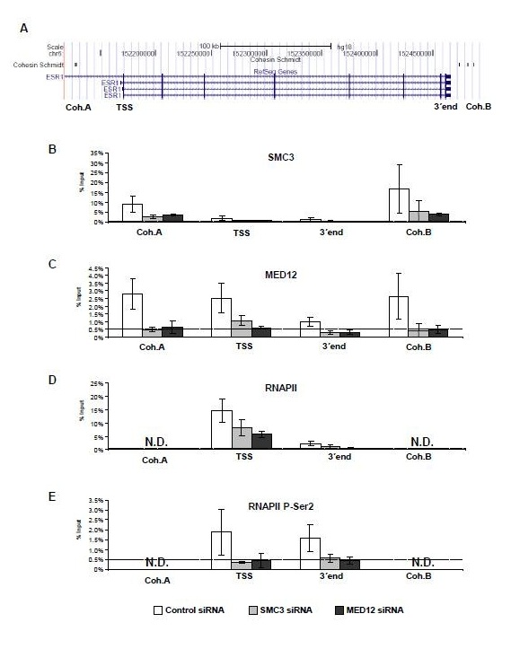 http://static-content.springer.com/image/art%3A10.1186%2F1756-8935-5-13/MediaObjects/13072_2012_Article_85_Fig4_HTML.jpg