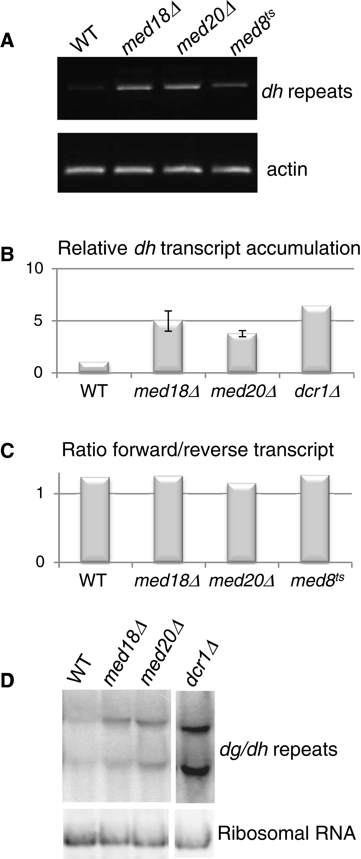 http://static-content.springer.com/image/art%3A10.1186%2F1756-8935-5-19/MediaObjects/13072_2012_Article_90_Fig2_HTML.jpg