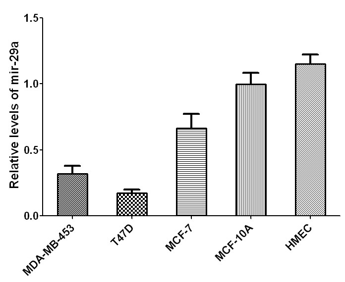 http://static-content.springer.com/image/art%3A10.1186%2F1756-9966-32-98/MediaObjects/13046_2013_Article_733_Fig2_HTML.jpg