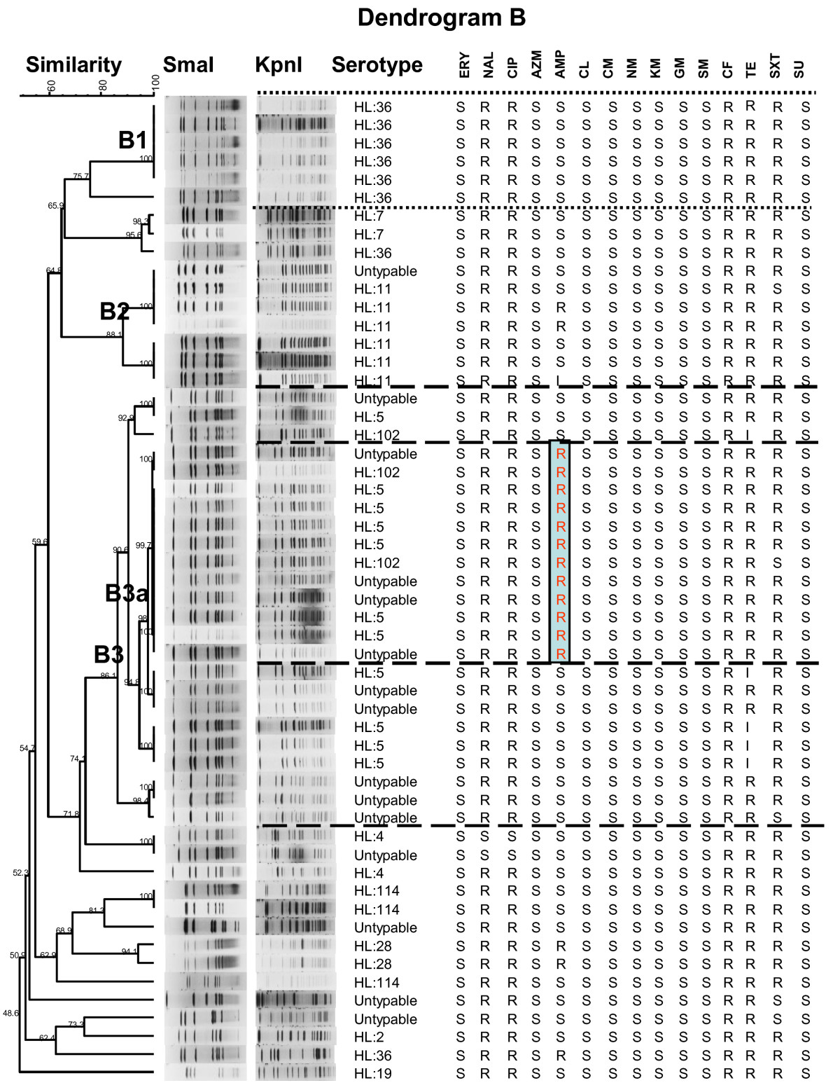 http://static-content.springer.com/image/art%3A10.1186%2F1757-4749-2-15/MediaObjects/13099_2010_Article_41_Fig3_HTML.jpg