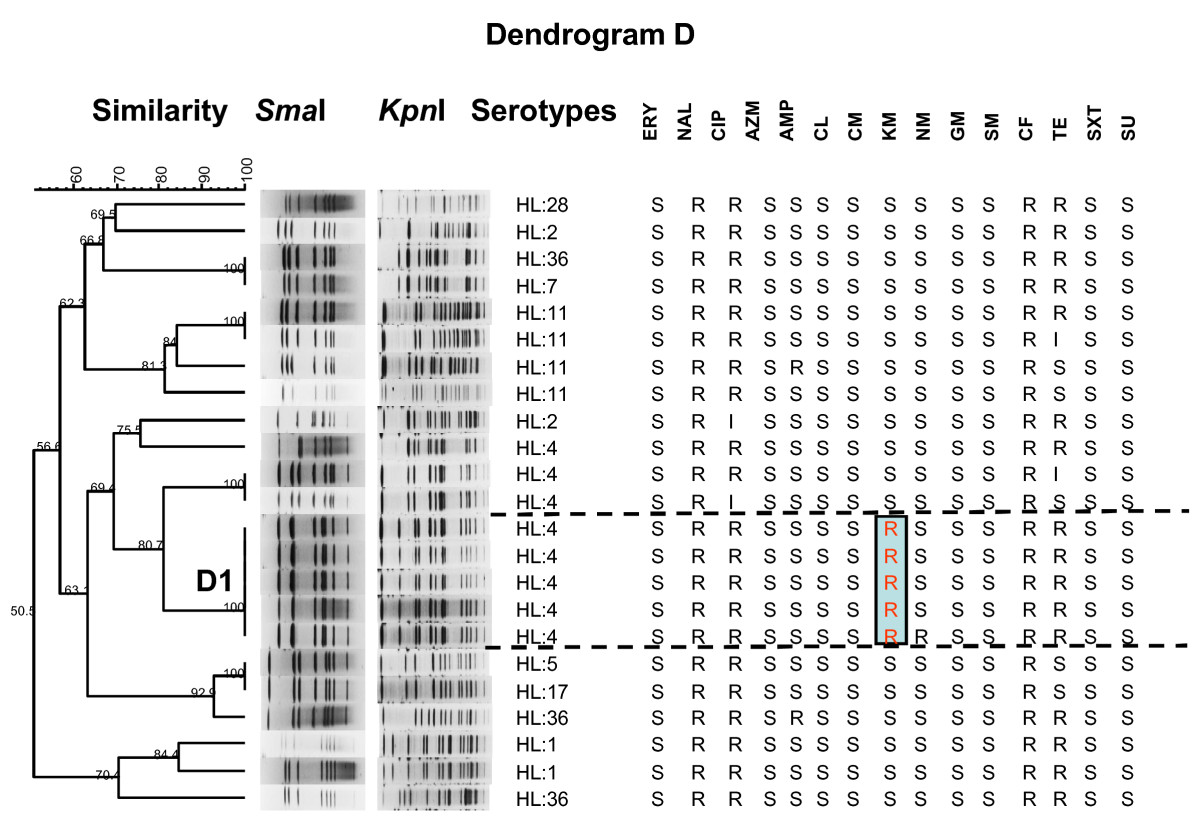 http://static-content.springer.com/image/art%3A10.1186%2F1757-4749-2-15/MediaObjects/13099_2010_Article_41_Fig5_HTML.jpg