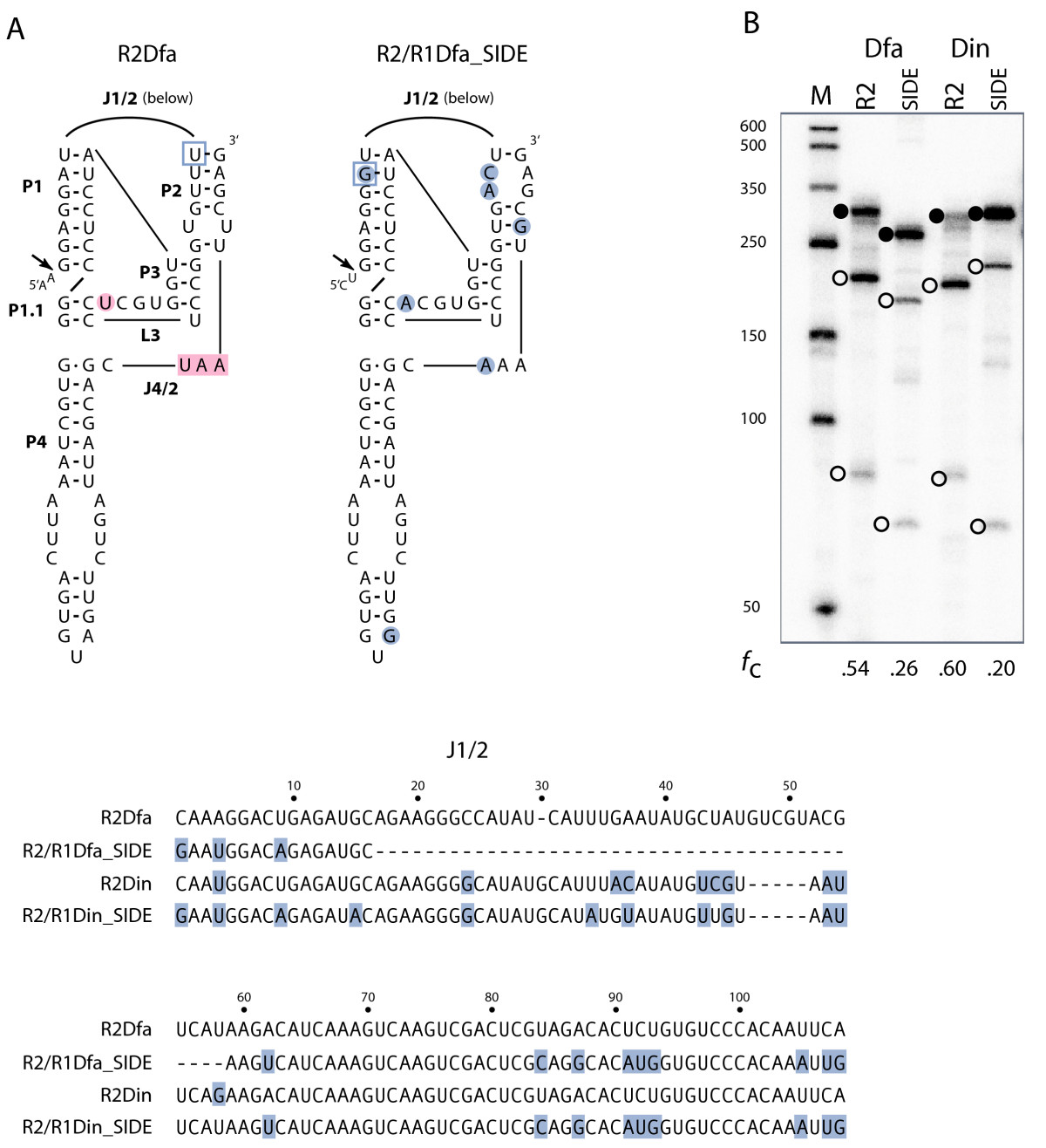 http://static-content.springer.com/image/art%3A10.1186%2F1759-8753-3-10/MediaObjects/13100_2012_Article_50_Fig6_HTML.jpg