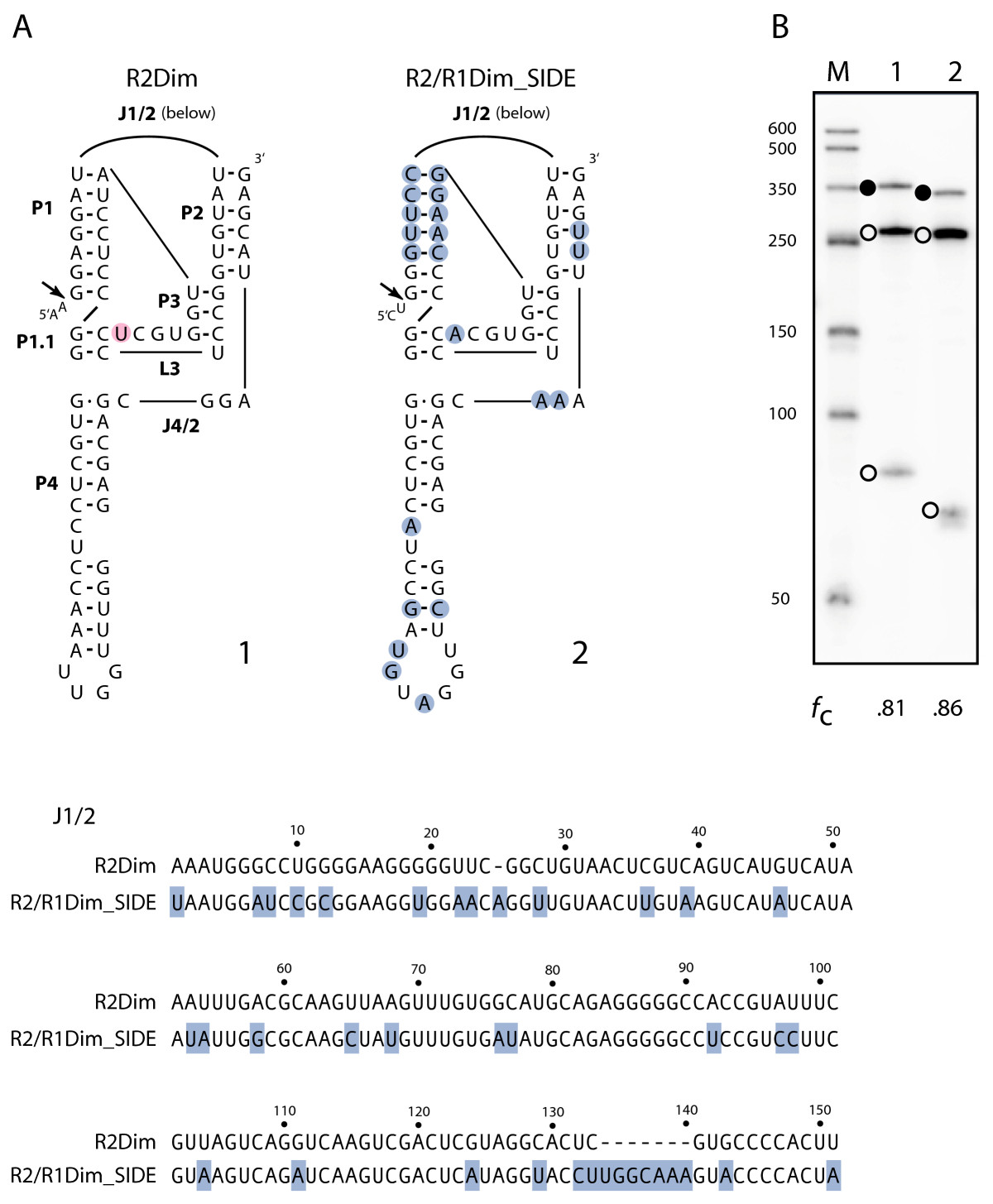 http://static-content.springer.com/image/art%3A10.1186%2F1759-8753-3-10/MediaObjects/13100_2012_Article_50_Fig7_HTML.jpg