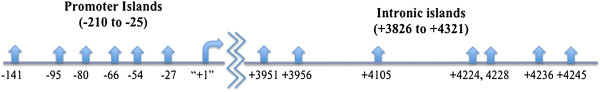 http://static-content.springer.com/image/art%3A10.1186%2F1868-7083-4-17/MediaObjects/13148_2012_22_Fig3_HTML.jpg